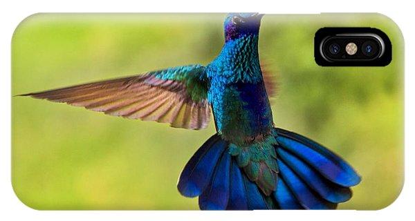 Hummingbird Splendour IPhone Case