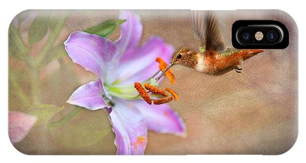 Hummingbird Sweets IPhone Case