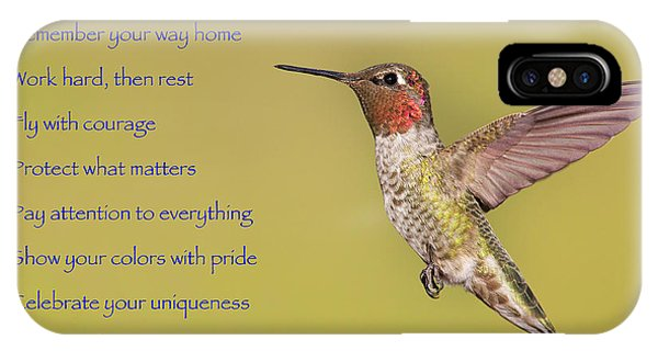 Hummingbird Wisdom IPhone Case