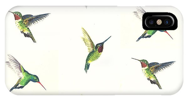 Bird Watercolor iPhone Case - Hummingbirds Number 2 by Michael Vigliotti