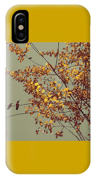 Hummingbirds On Yellow Tree IPhone Case