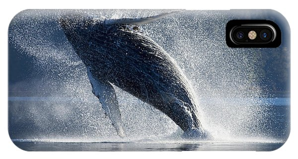 Whales iPhone Case - Humpback Whale Breaching In The Waters by John Hyde