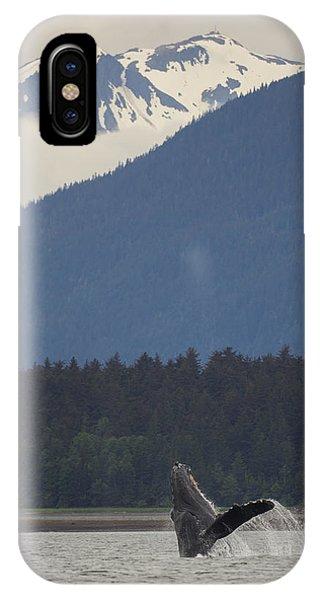 Humpback Whale In Alaska 73a6815  IPhone Case