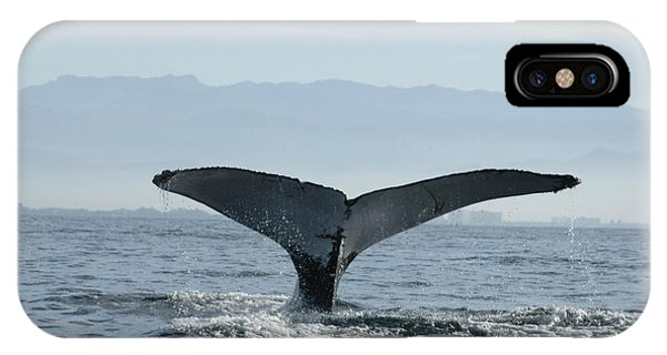 Humpback Whale Tail 3 IPhone Case
