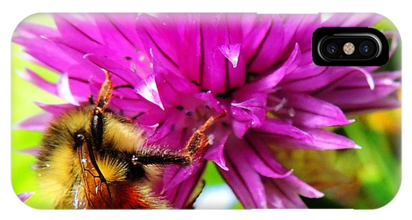 Hungry Bee IPhone Case