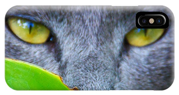 IPhone Case featuring the photograph Hunter by Debbie Cundy