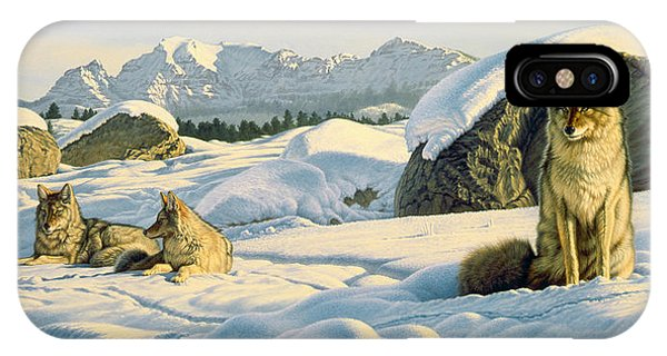 Yellowstone iPhone Case - Hunter's Rest by Paul Krapf