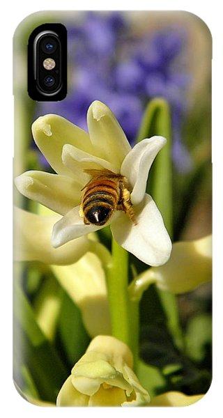 Honeybee iPhone X Case - Hyacinth And Honeybee by Chris Berry