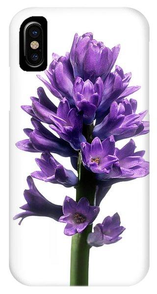Hyacinth (hyacinthus Sp.) Phone Case by Derek Lomas / Science Photo Library