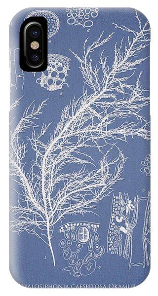 Alga iPhone X Case - Hyalosiphonia Caespitosa Okamura by Aged Pixel