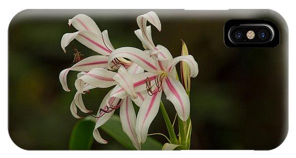 Hybrid Swamp Lily IPhone Case