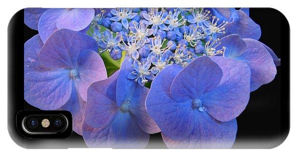 Hydrangea Blossom Macro IPhone Case