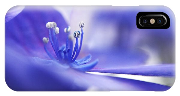 Hydrangea Closeup IPhone Case