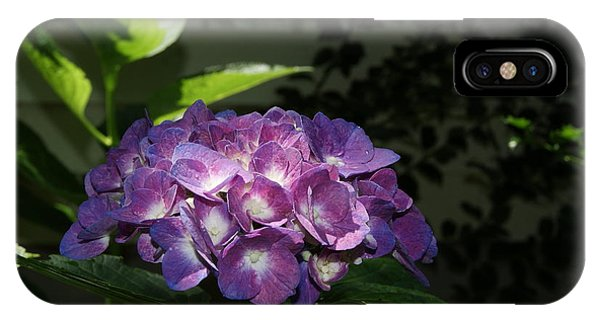 Hydrangea Season IPhone Case