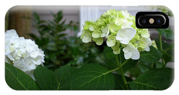 Hydrangeas IIi IPhone Case