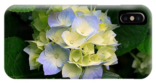IPhone Case featuring the photograph Hydrangeas by Marian Palucci-Lonzetta