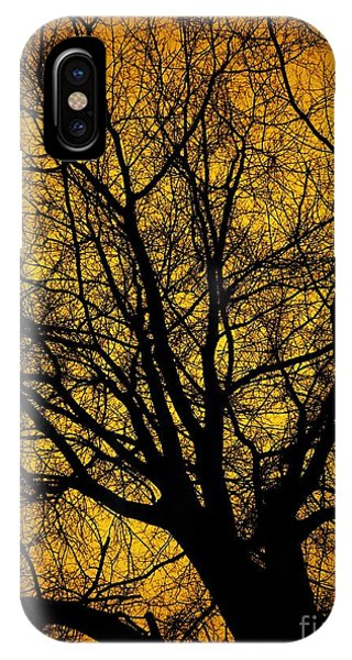 I Love Bare Trees IPhone Case