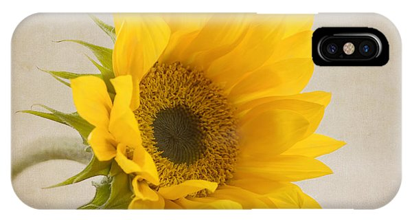 Floral iPhone Case - I See Sunshine by Kim Hojnacki