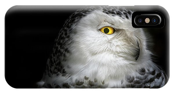 Snowy iPhone Case - I See You by Michael