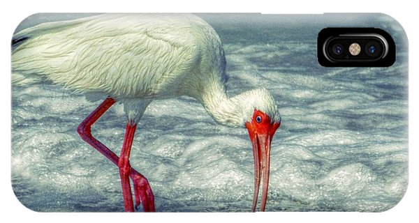 Ibis Feeding IPhone Case