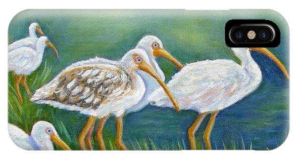 Ibis Flock With Juvenile IPhone Case
