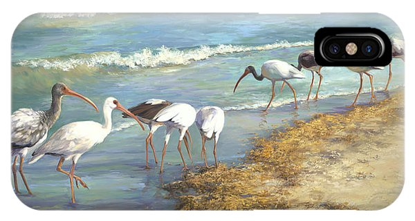Fowl iPhone Case - Ibis On Marco Island by Laurie Snow Hein