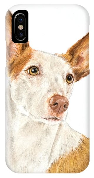 Ibizan Hound In Pastel IPhone Case