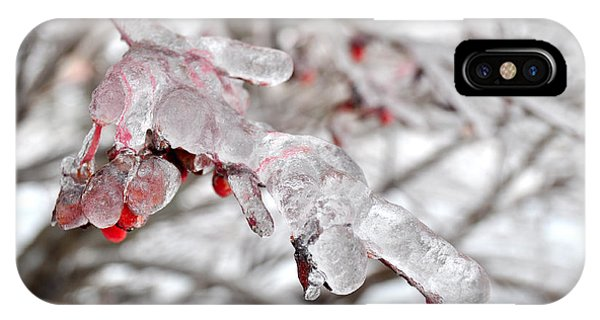 Ice Covered Berries IPhone Case