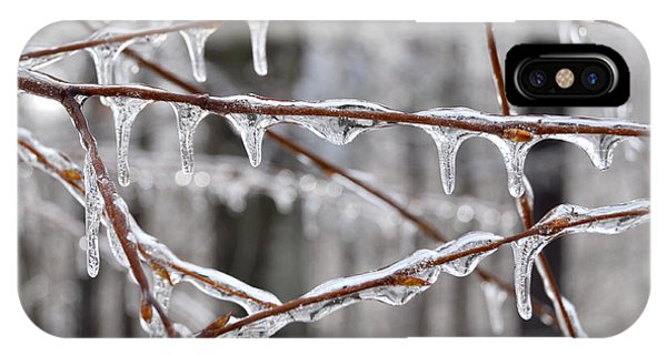 Ice Covered Branches IPhone Case
