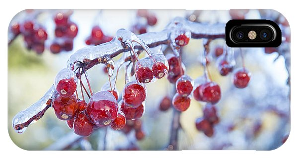 Ice Covered Crab Apples IPhone Case