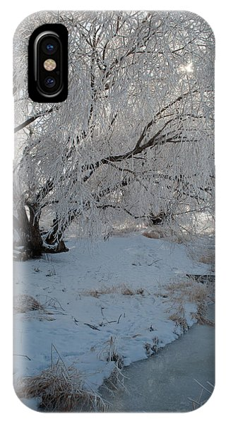 Ice Covered Tree And Creek In Montana IPhone Case