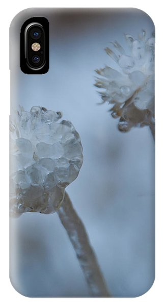 Ice-covered Winter Flowers With Blue Background IPhone Case