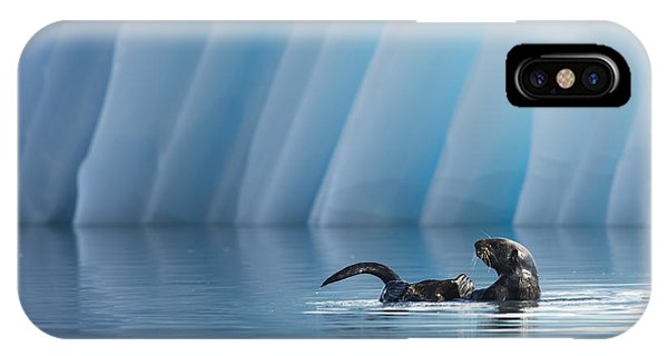Otter Pop IPhone Case