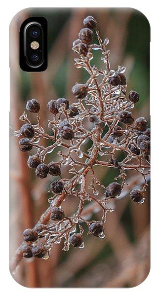 Ice On Berries IPhone Case