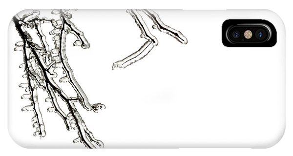 Ice iPhone Case - Ice On Branches by Blink Images