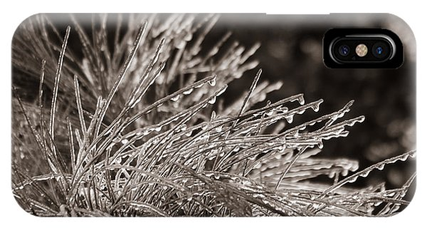 Ice On Pine IPhone Case