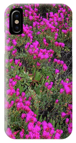 Half Moon Bay iPhone Case - Ice Plant Along The Pacific Ocean by Chuck Haney