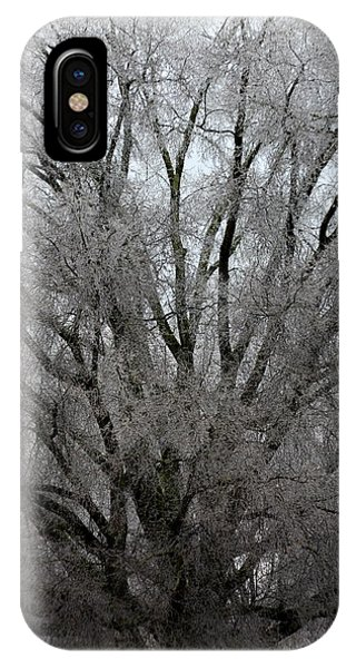 Ice Sculpture IPhone Case