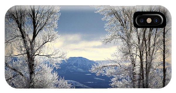 Ice Trees IPhone Case