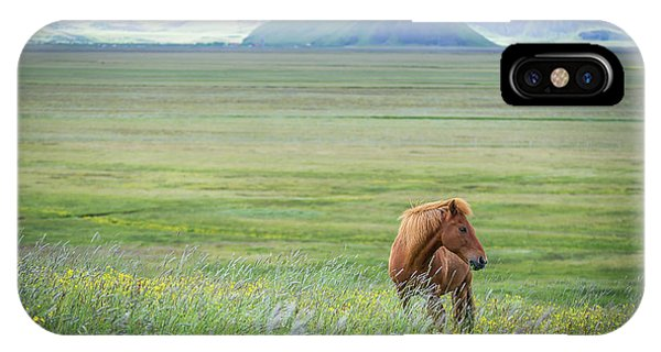 Horse iPhone Case - Iceland In A Nutshell by Petra M. Schmitz