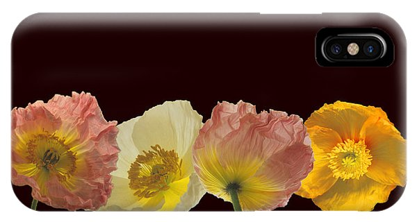 Iceland Poppies On Black IPhone Case