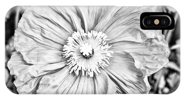 IPhone Case featuring the photograph Iceland Poppy In Black And White by Priya Ghose