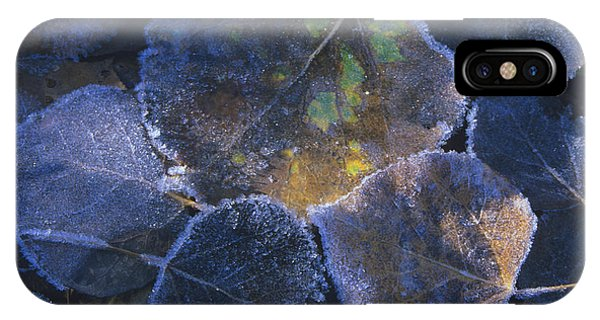 Icy Leaves IPhone Case