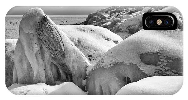 Icy Shoreline - Monochrome IPhone Case