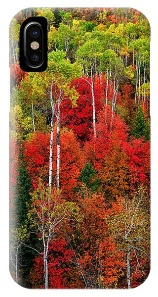 Idaho Autumn IPhone Case
