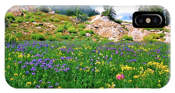 Idaho Mountain Wildflowers IPhone Case