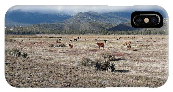 Idlewild Herd 2 Phone Case by Deborah Smolinske