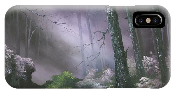If You Go Down In The Woods Today ? IPhone Case