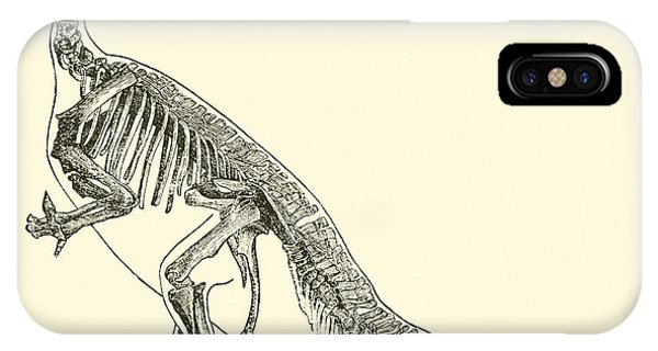 Bone iPhone Case - Iguanodon by English School