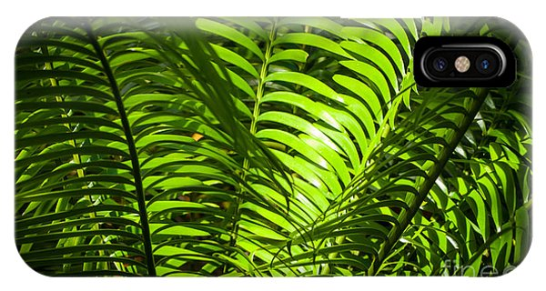 Illuminated Jungle Fern IPhone Case